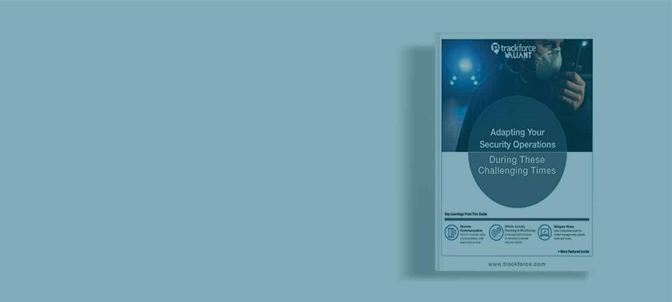 What Are the Biggest Concerns Facing Security Professionals Right Now? Free Guide for the Security Professional
